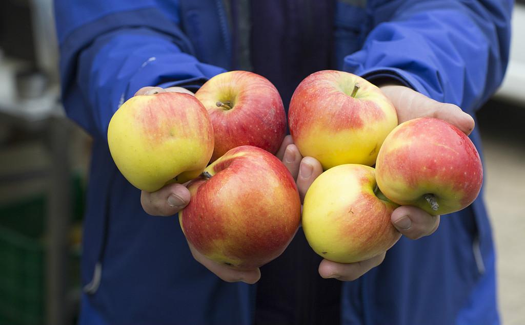 苹果能扶贫:为了这个,交易所承担了最大的风险