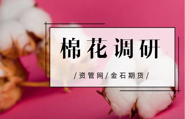 2018新疆棉花调研