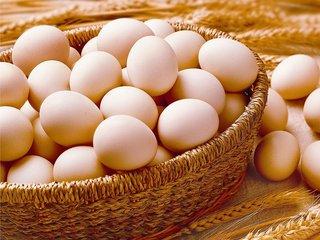 鸡蛋现货趋于见顶 期价长期看空