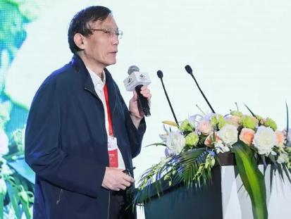 刘世锦:土地财政逐步走到了尽头,很难再持续了