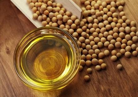 2000亿美元新关税落地 油脂企业进入寻豆模式