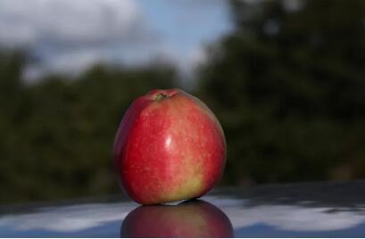 讨论苹果1910以后合约交割规则修改 不影响已上市合约