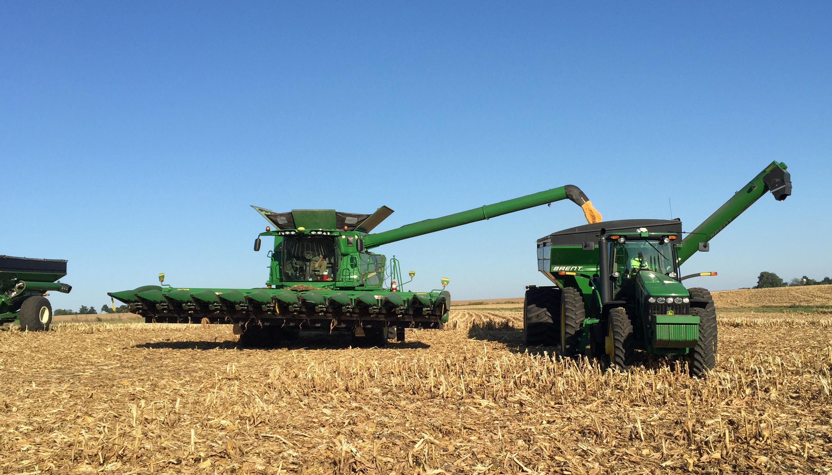 卖不出去就囤货?美国大豆种植者押注贸易局势转好