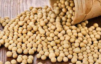 非洲猪瘟搅局 美豆市场难言乐观