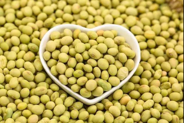 经历2018年大起大落之后,全球大豆市场的格局有何变化
