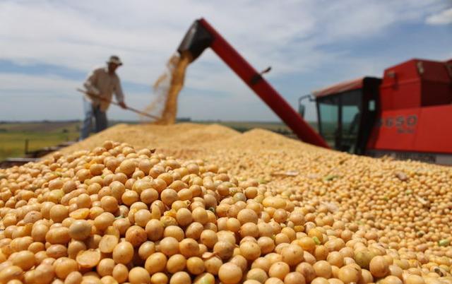 中国5月大豆进口同比大跌24% 成品油进口环比大跌近三成
