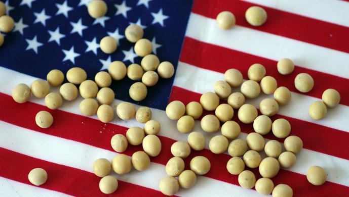 两部门:中美元首会晤后有数百万吨美国大豆运往中国