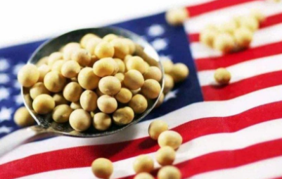 扩大美豆采购真的会冲击国内豆粕市场吗?