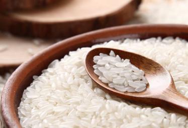 粳米期货今日上市挂牌基准价低于新米价格