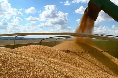 农产品可以大胆做多吗?供应无碍 形势多变