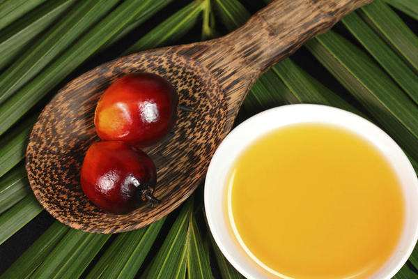 原创 :关于棕榈油、印度及猪的几点思考