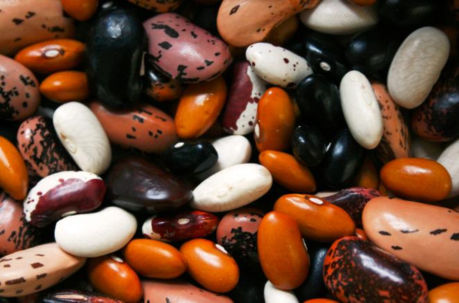 我国大豆贸易企业国内外套期保值研究 ——基于引入基差影响因素分析