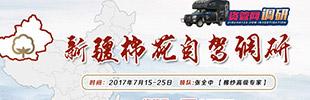 7月15日-25日新疆棉花自驾调研