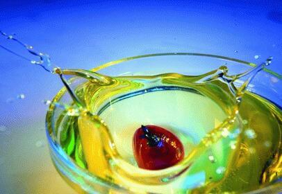 油利有据——棕榈油产业链及油脂油料期货投资研讨会