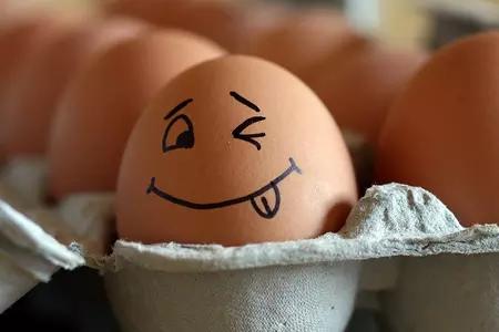 """""""火箭蛋""""坠入低谷 鸡蛋价格创十年新低"""