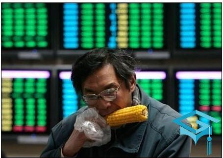 陈志龙:改革不能把民众当韭菜 高速IPO可能压垮市场