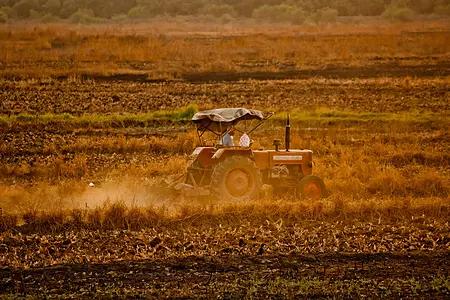 吴星:如何构建农产品的研究框架?