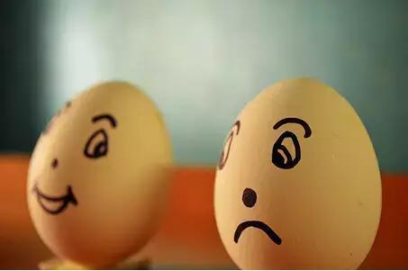 鸡蛋为什么一会儿跌一会儿涨 因为鸡多蛋就多 蛋涨鸡也涨(一个让人晕菜的逻辑)