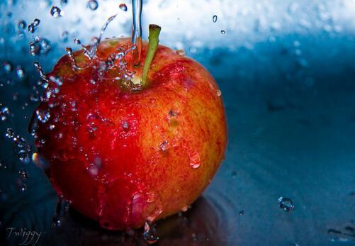 郑商所苹果和红枣期货获准立项