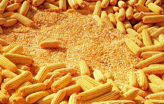 【美国农产品解析】拐点即将到来